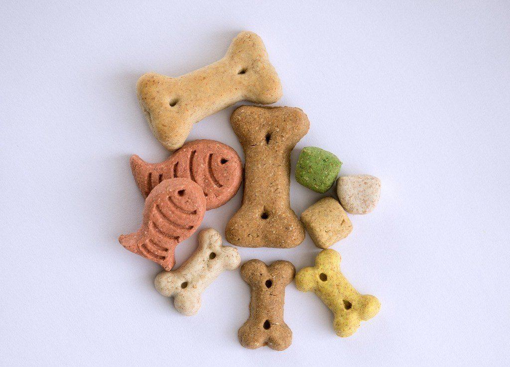 variety of high calorie dog treats