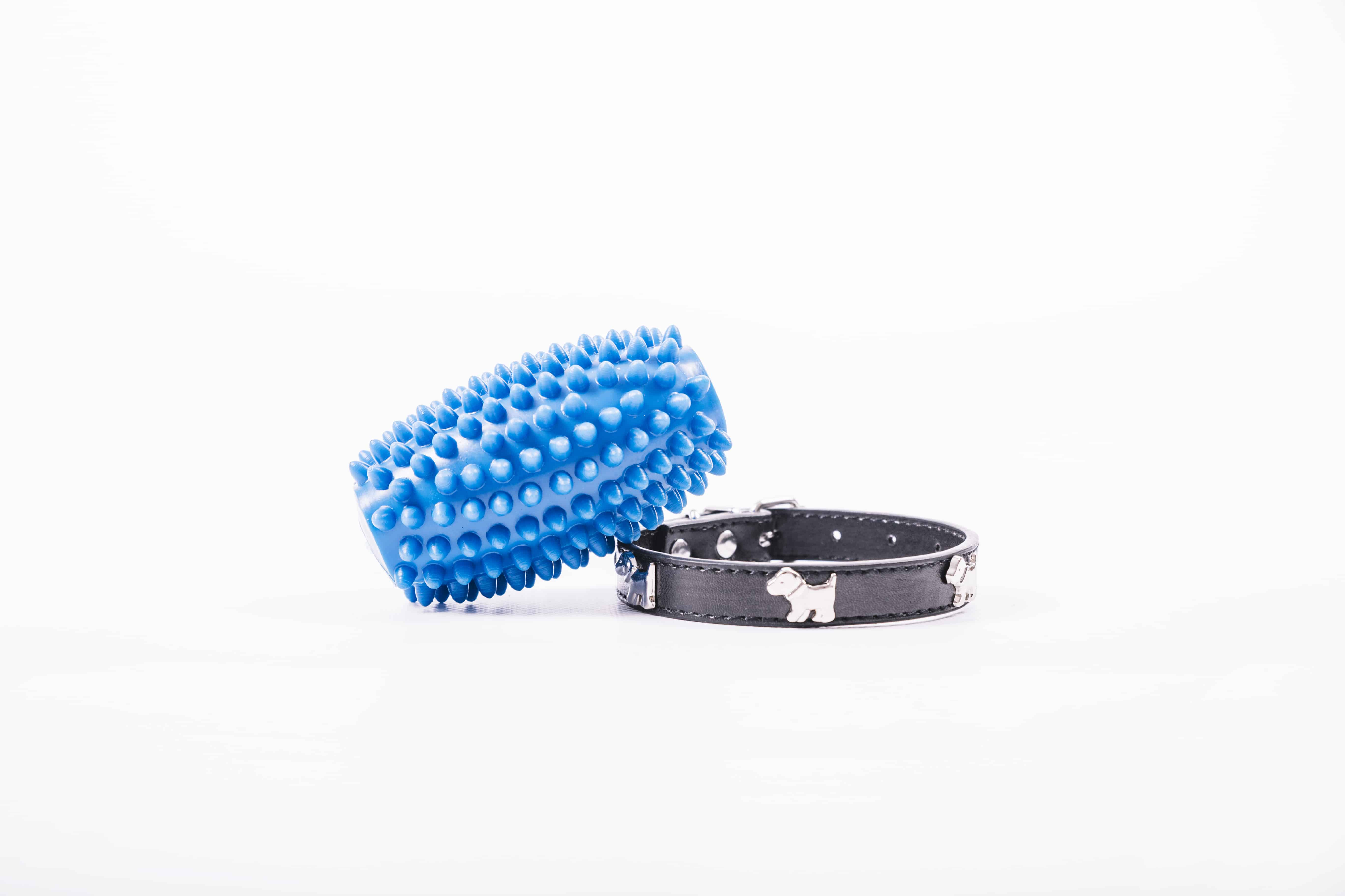 dog collar and toy on white background