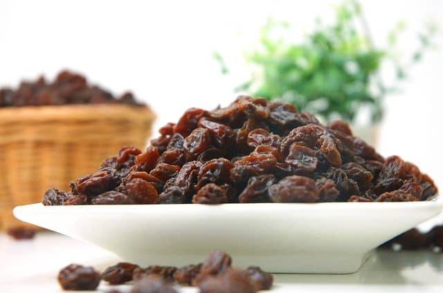 white plate of raisins